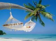 Как в 1 с оформить отпуск: инструкция