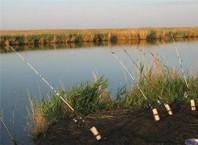 Как сделать удочку для рыбалки?