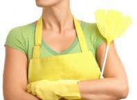 Как избавиться от мушек на кухне: домашнее хозяйство