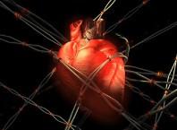 Как алкоголь влияет на сердце: польза и жаль?