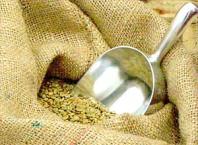 Где купить зеленый кофе Витебску?