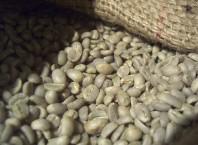 Цена зеленого кофе в Ижевске: где найвигиднише покупать?