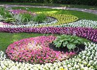 Которые бывают типы цветников?