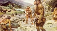 Где и как жилы древнейшие люди?