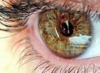 Сохранение зрения при работе за компьютером