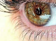 Чему слезятся глаза от компьютера?