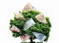 Как сделать денежное дерево?