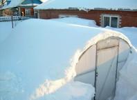 Как построить зимнюю теплицу?